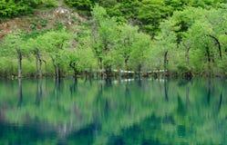 Montagnes, eau et indicateurs de prière photographie stock libre de droits