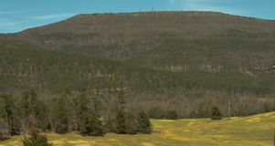 Montagnes en Arkansas image stock