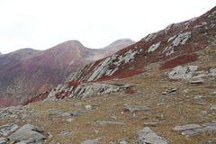 Montagnes en automne avec l'herbe brune et rougeâtre sous le ciel nuageux photo libre de droits