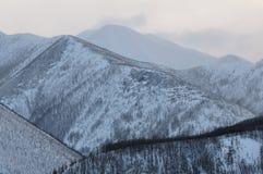 Montagnes en hiver Photographie stock libre de droits