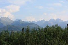 Montagnes en Pologne Photo libre de droits