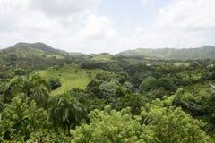 Montagnes en République Dominicaine  Image libre de droits