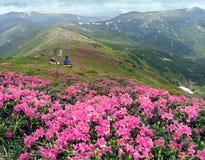 Montagnes et amoureux Photo libre de droits