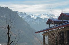 Montagnes et arbres de Manali images stock