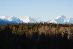Montagnes et bois Photographie stock