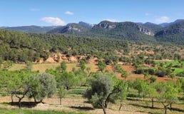 Montagnes et champs dans la r?serve naturelle de Beseit de ports d'Els, Espagne photo libre de droits