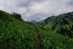 Montagnes et chemin dans la région d'Almaty Images stock