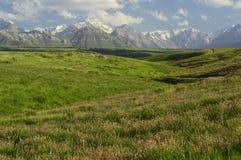 Montagnes et collines près de Khaidarkan, Kirghizistan Photographie stock libre de droits