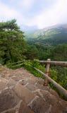 Montagnes et escaliers photos libres de droits