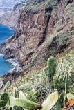 Montagnes et falaises de la Madère Image libre de droits