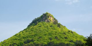 Montagnes et forêt image stock