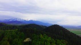 Montagnes et forêt Photo stock