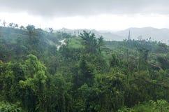 Montagnes et forêt de nuage de Jayuya images stock