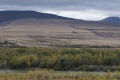 Montagnes et forêt sous les nuages noirs photos libres de droits