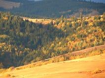 Montagnes et forêts Photo libre de droits