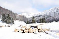 Montagnes et forêts de la Roumanie en janvier Image libre de droits