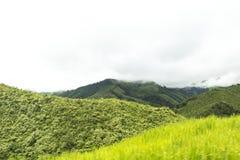 Montagnes et jungle (Nan) en Thaïlande Photographie stock libre de droits