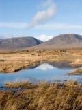 Montagnes et lac en Irlande Images stock