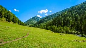 Montagnes et nuages Montagne Altai images stock