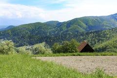 Montagnes et prés alpins Image libre de droits