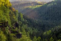 Montagnes et roches dans la forêt images stock