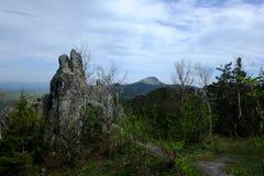 Montagnes et roches dans une forêt verte image libre de droits