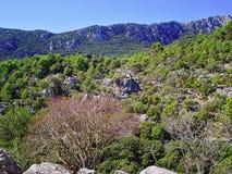 Montagnes et roches Sierra de Tramuntana près du monastère Lluc Photographie stock libre de droits
