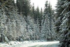 Montagnes et routes roumaines image libre de droits
