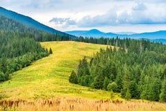 Montagnes et vallée bleues avec l'herbe Photos libres de droits