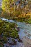 Montagnes fraîches de forme de rivière dans la longue exposition Photos libres de droits