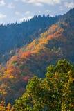 Montagnes fumeuses d'automne Photos libres de droits