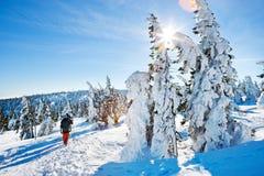 Montagnes (géantes) de Krkonose, République Tchèque Images libres de droits