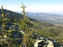 Montagnes géantes en Pologne et Tchèque Photo libre de droits