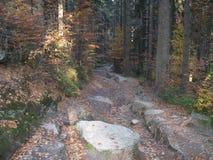 Montagnes géantes en Pologne et Tchèque Images libres de droits