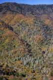 Montagnes grandes de Smokey Image libre de droits