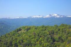 Montagnes japonaises Photo libre de droits