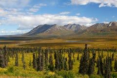 Montagnes, lac et toundra de l'Alaska Images libres de droits