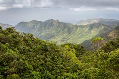 Montagnes luxuriantes de jungle d'Hawaï Photo stock