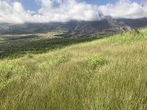 Montagnes luxuriantes et herbe verte Photographie stock
