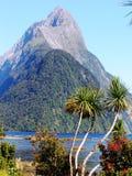 Montagnes méridionales d'Alpes de la Nouvelle Zélande Images libres de droits