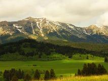 Montagnes Montana de printemps Photographie stock libre de droits