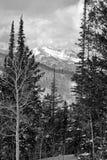 Montagnes noires et blanches Image stock