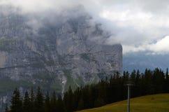 Montagnes nuageuses suisses, lignes d'arbre Photographie stock libre de droits