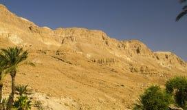 Montagnes oranges dans le désert de Judean Photographie stock