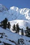 Montagnes orientales de Sayan. Altai. Photographie stock