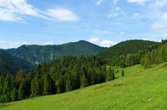 Montagnes Pieniny en Slovaquie et en Pologne Image libre de droits