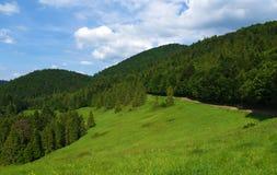 Montagnes Pieniny en Slovaquie et en Pologne Photos libres de droits