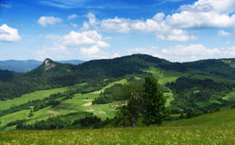 Montagnes Pieniny en Slovaquie et en Pologne Photo libre de droits