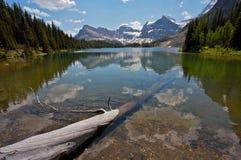 Montagnes rocheuses de lac sunburst image stock