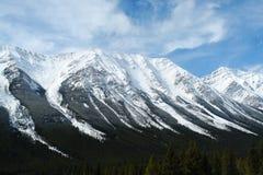 montagnes rocheuses de source Photo stock